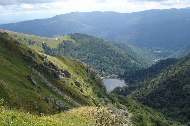 La vallée de Munster en Alsace